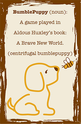 What is a BumblePuppy